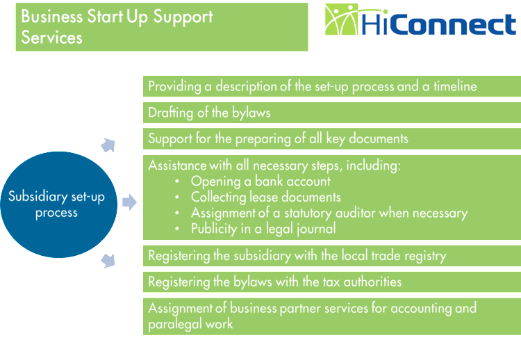 Business Subsidiary Startup Services - HiConnect